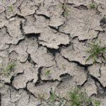 秋冬に急増!乾燥肌ニキビの原因と対処法とは?
