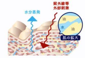 ラメラ構造乱れの説明図