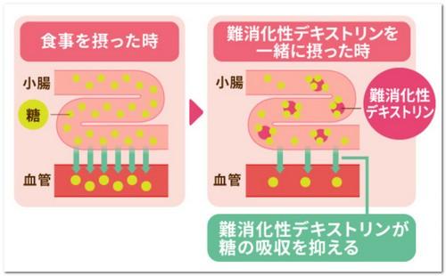 難消化性デキストリンの働きの図